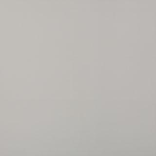 wit gepolijst 60x60 cm als vloer- en wandtegels te gebruiken
