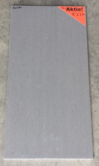 vloertegel 60x60 cm TM light grey