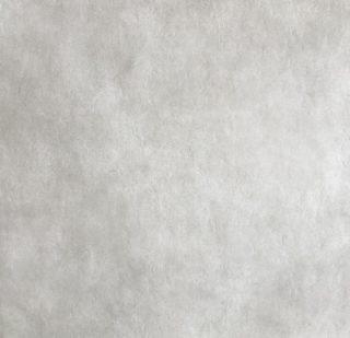 betonlook vloertegel 60x60 cm licht grijs A22